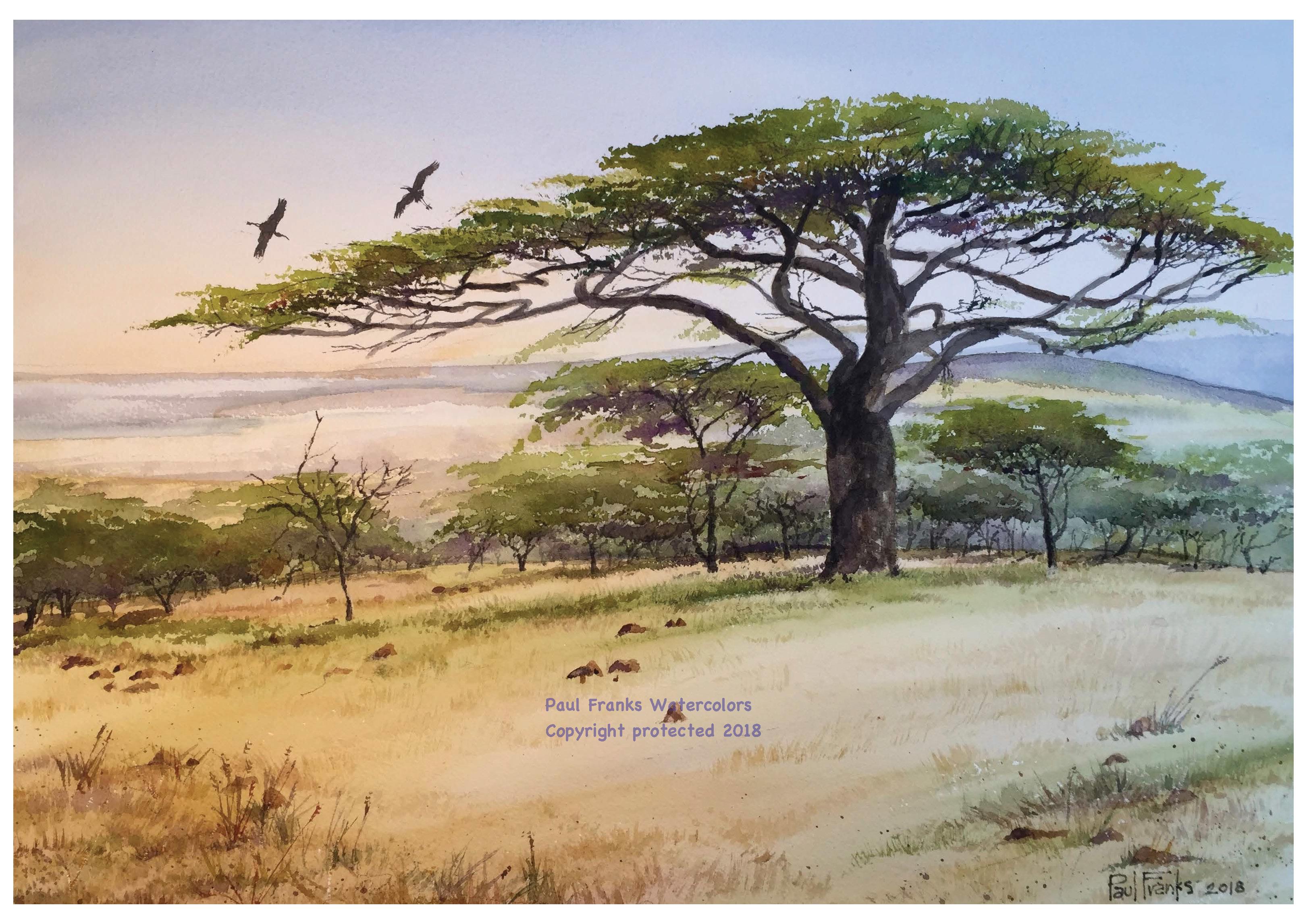 Watercolor Acacia on the Maasai Mara Plain